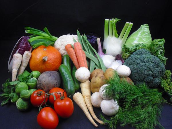 Januar Premium Gemüsebox   25 Produkte = 8kg   frisch vom Markt