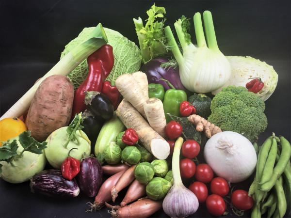 März Premium Gemüsebox   der Saison   28 Produkte = 8kg   frisch vom Markt